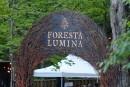 Foresta Lumina doit prendre une «courte pause»