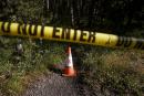 Un homme tué par un grizzli au parc de Yellowstone