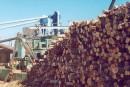 Crise forestière sur la Côte-Nord: encore du travail à faire