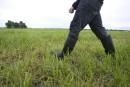 «Les jeunes reviennent au travail agricole», estimele ministre Paradis
