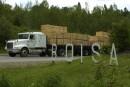 Crise forestière sur la Côte-Nord: Québec s'entend avec Résolu, Arbec et Boisaco