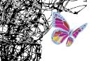 Trans: du malaise à la délivrance