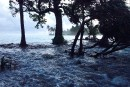 Climat: les îles du Pacifique mettent de la pression sur la conférence de Paris