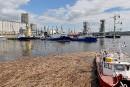 Agrandissement du port de Québec: Beauport 2020 «manque de clarté», dit le député Côté