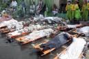 Plus de 700 morts dans une bousculade près de La Mecque