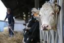 Les producteurs de lait québécois convergent vers Ottawa pour se faire entendre