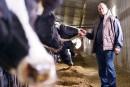 Gestion de l'offre laitière: les conservateurs peu menacés par la grogne
