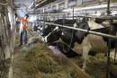 Les producteurs agricoles estiment être les perdants du PTP