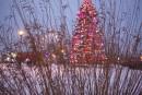 L'arbre de Noël quitte le Marché de la gare