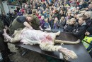 Danemark: la dissection publique d'un lion fait polémique