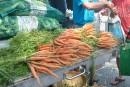 Marché et étiquette pour les produits agricoles de la région de Québec