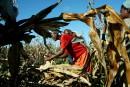 Le «Fonds vert» de l'ONU distribue ses premières aides aux pays du Sud