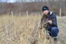 Une lueur d'espoir pour les terrains contaminés
