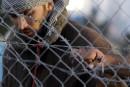 Aperçu des procédures en place pour l'accueil des réfugiés