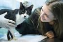 Une famille berlinoise retrouve son chat disparu depuis 7ans à Noël