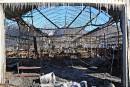 Saint-Nicolas: les Serres Fortier ravagées par un incendie