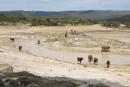 Afrique australe: la sécheresse affame 14 millions de personnes