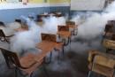 Virus Zika: urgence de portée mondiale, dit l'OMS