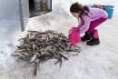8292 poulamons et autres histoires de pêche