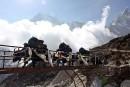 Pour parer aux avalanches, le Népal offre des cartes SIM aux touristes