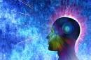 Étudier et bouger pour garder un cerveau jeune