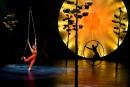 Le Cirque du Soleil annule d'autres représentations de <em>Luzia</em>