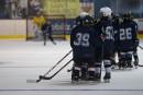 <em>Notre hockey mineur a la gangrène</em>