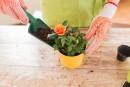 10 idées-cadeaux pour une maman qui jardine