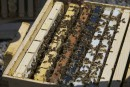 Vol de ruches: le deuxième accusé comparaît