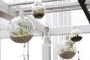 Mini-terrariums et kokedamas: décorations vivantes