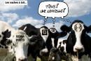 Caricatures de Jean Isabelle (mai)