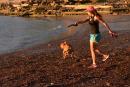 Lévis ouverte à la baignade dans le fleuve dès l'été 2017