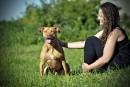 Une décision «inhumaine» selon des organismes de protection animale