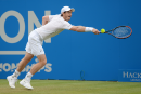 Andy Murray en demi-finales du Queen's