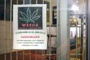 Le «roi du cannabis» arrive à Québec