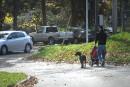 Le SPS aura les chiens à l'oeil dans les parcs