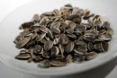 Des graines de tournesol contaminées à la Listeria