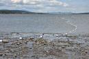 Agrandissement du port de Québec: Beauport préféré à trois autres sites