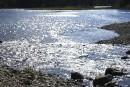 Un bambin retrouvé inanimé dans l'eau en Beauce