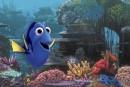 Un record de 27 oeuvres en licepour l'Oscar du meilleur film d'animation