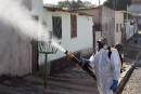 Deux vaccins efficaces contre le virus Zika