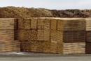 Bois d'oeuvre: Québec prêt à débourser 300 millions pour soutenir l'industrie