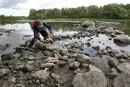Poissons morts dans la rivière Yamaska: le flou persiste