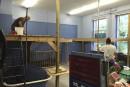 Les mezzanines de la CSRS ont été démantelées