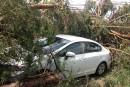 La météo cause des dommages à Roxton Falls