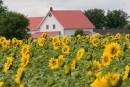Cantons-de-l'Est et Centre-du-Québec: un coin de paysà découvrir