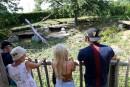 Attaque au Zoo de Granby:«Rien à reprocher à la lionne»