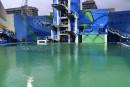 Le bassin olympique de plongeon rouvert