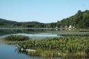 Algues bleu-vert: 175 tonnes d'argile pour sauver le lac Bromont