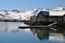 Polars islandais: inspirante terredeglace